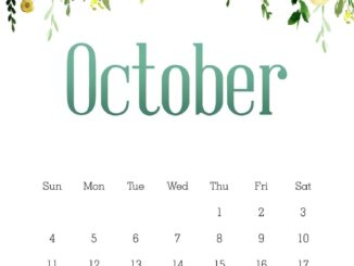 Floral October 2020 Wall Calendar Cute