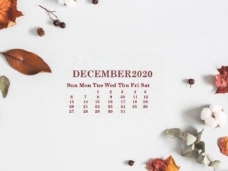 Floral December 2020 Calendar Wallpaper for Desktop