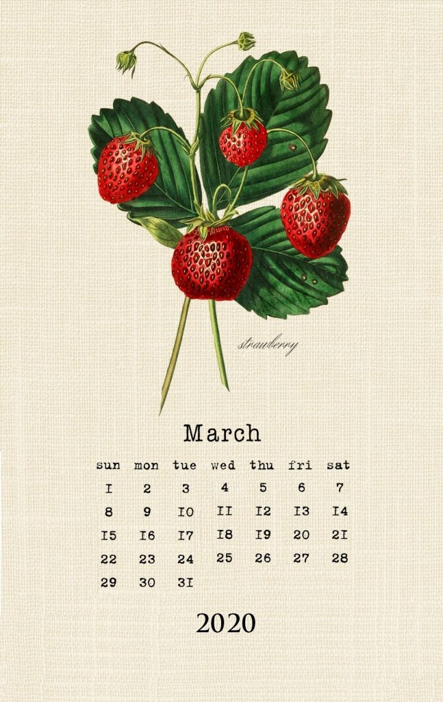 Cute March 2020 Wall Calendar