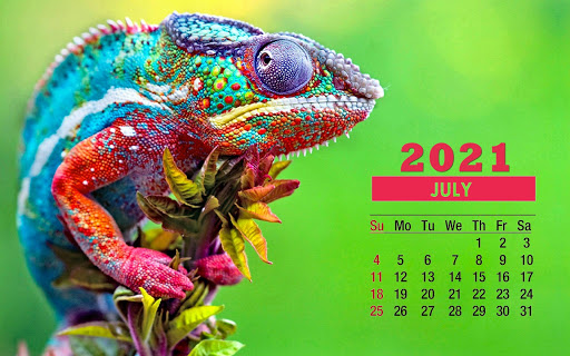 July 2021 Desktop Calendar Wallpaper